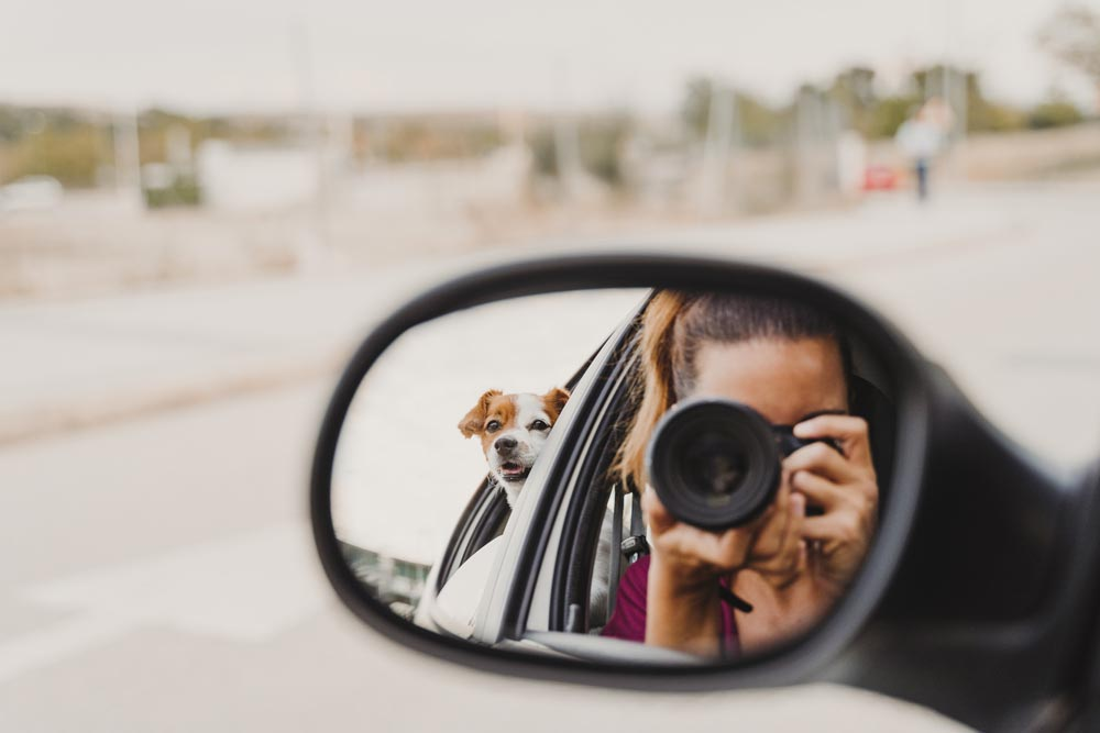 Perspektivwechsel im Rückspiegel